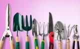 Row of gardening tools on soil background - 220173826