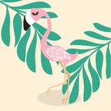 cute pink flamingo  tropical vector - 220206631
