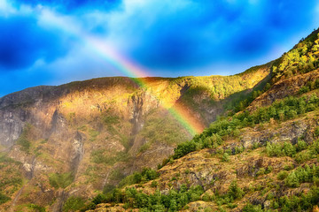 Vibrant rainbow in Norwegian mountains forest near fjord, background with copyspace