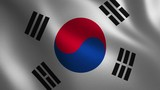 South Korea flag waving 3d. Abstract background. Loop animation. - 220225206