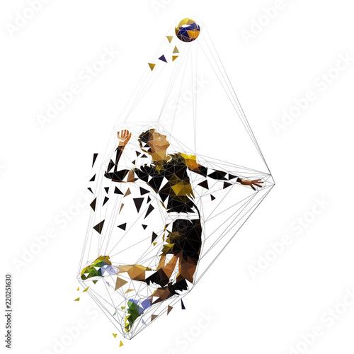 Volleyball player serving ball, polygonal vector illustration
