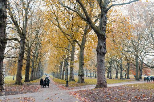 Beautiful landscape around Hyde Park in autumn, London, United Kingdom