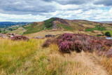 Rock formations at the Roaches, Peak District National park, view of the stones and heather, selective focus - 220300604