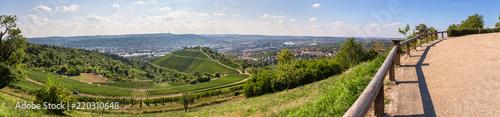 Foto Murales vineyard landscape near stuttgart germany high definition panorama