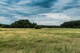 weiches Feld in Mecklenburg