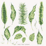 Vector template card of green tropical leaves - 220363824