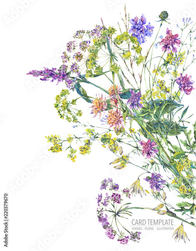 Sticker Watercolor summer wildflowers. Botanical colorful illustration