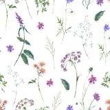 Watercolor summer wildflowers seamless pattern - 220381266