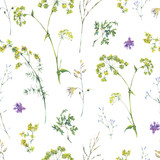 Watercolor summer seamless pattern of yellow wildflowers - 220381484