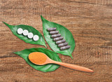 Powder medicine herb and capsule. - 220405208