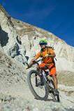bike giude in action - mountainbike scool - 220438421