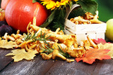 Raw wild chanterelle mushrooms. Composition with wild mushrooms - 220496062