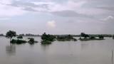 Flooded farmland by torrential rain - 220499811