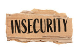 Insecurity - 220507009