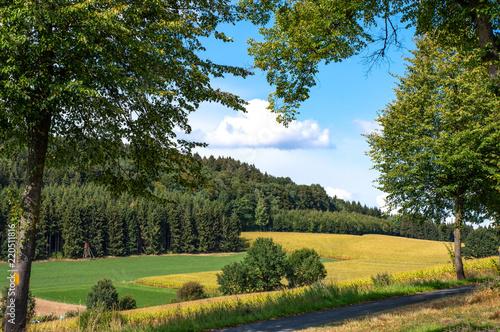 Leinwanddruck Bild Hochsauerland