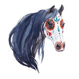 Watercolor horse portrait - 220518826