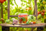 Tasty pickled tomatoes on old chair in greenhouse - 220553472