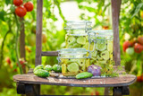 Natural pickled cucumbers in small summer greenhouse - 220553485