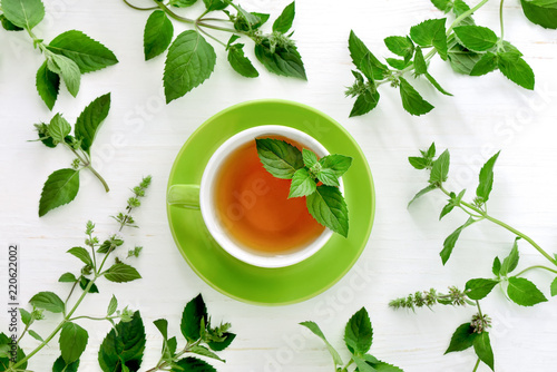 Fototapeta Mint tea background with a space for a text