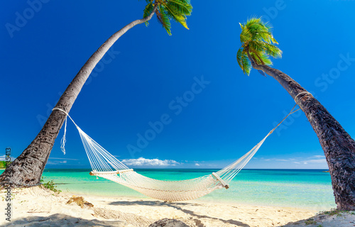 Empty hammock in the shade of palm trees, Fiji Islands