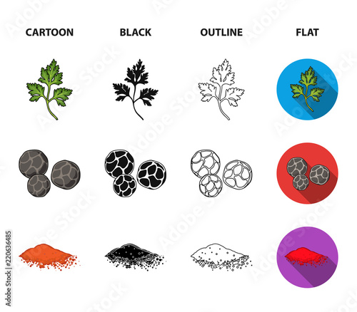 Ptrushka, black pepper, paprika, chili.Herbs and spices set collection icons in cartoon,black,outline,flat style vector symbol stock illustration web.