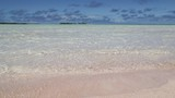 in polynesia   the pink sands of the coastline - 220644645