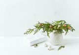 Vintage Christmas decoration made from natural evergreen twigs. Copy space - 220670819