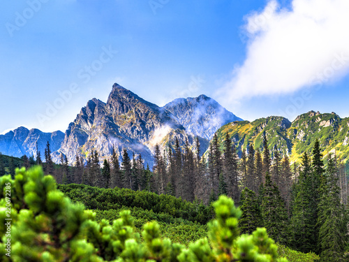 Polish Tatra mountains summer landscape with blue sky and white clouds. Panoramic HDR montage - 220672285