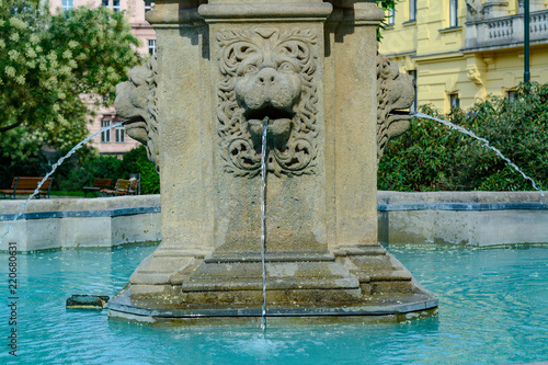 Fountain With A Lion S Face
