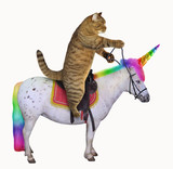 The cat is riding the real unicorn. White background. - 220683050