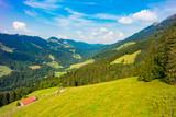 German Alps Allgäu during Summer - 220708200
