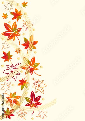 秋 紅葉 水引 背景