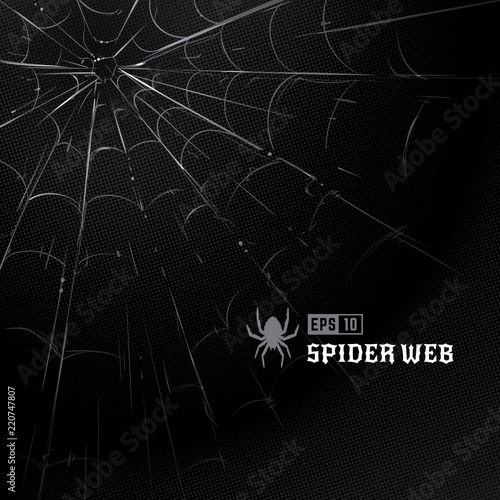 Fototapeta Vector spider web on black halftone background. Hand-drawn spider web. Vector art.