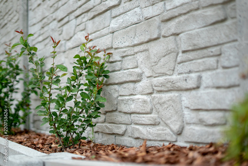 Ogrodzenie betonowe - 220753626
