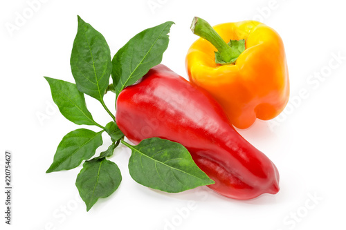 Two red and yellow bell peppers and twig with leaves - 220754627