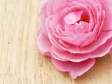 rosaceae pink rose bleach wood 13 - 220755062