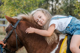 A cute little blonde girl is sitting on a pony in autumn. - 220758834