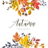 Warm autumn floral background - 220774026
