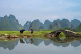 Guilin's karst landscape - 220781494