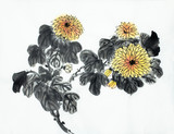 bright branch of chrysanthemum - 220799408