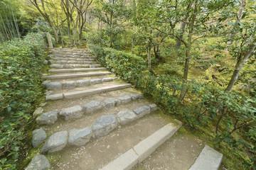 Green trail in Arashiyama, Kyoto, Japan © leeyiutung