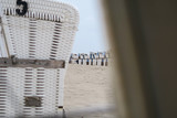 Several empty white beach chairs lined up at the beach | Selective focus  - 220832695