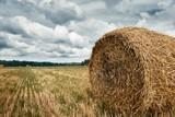 haystacks in summer field, beautiful landscape - 220853823