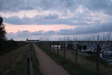 Bootshafen von Scharendijke / Zeeland - 220871623