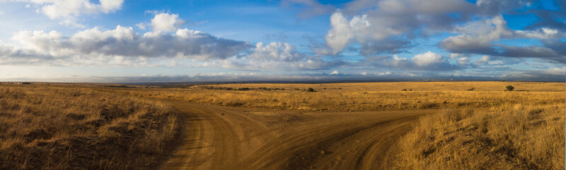 crossroads safari trail panorama, africa © luckymi
