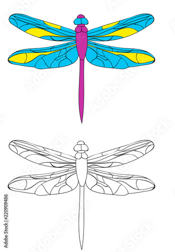 dragonfly, book coloring pages