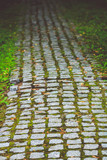 Cobblestone road through a forest. Close up. - 220911459