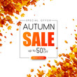 Autumn 50% sale. Promotion card with golden leaves.
