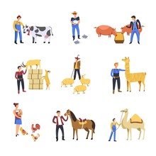 People Breeding Cattle Animals  Farmer Man And Woman Feed Cow Rabbits Or Pig And Sheep Or Goat  Lama Sticker