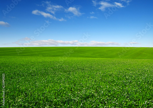 green field and clouds